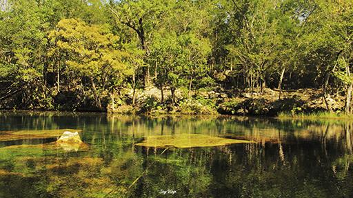 cenote jardin de eden
