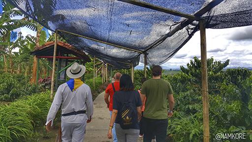 Hacienda Cafetera en Colombia