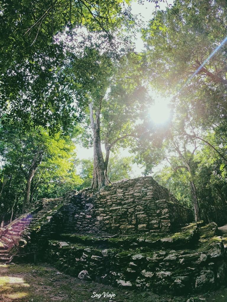Zona Arqueológica de Muyil, Quintana Roo, Mexico.