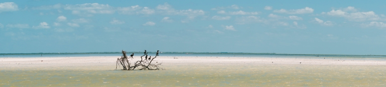 Passion Island in Holbox